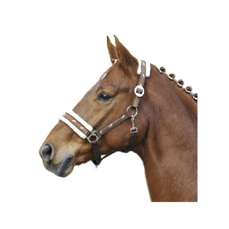 hkm-nylon-head-collar-st-maxime-with-plush-padding