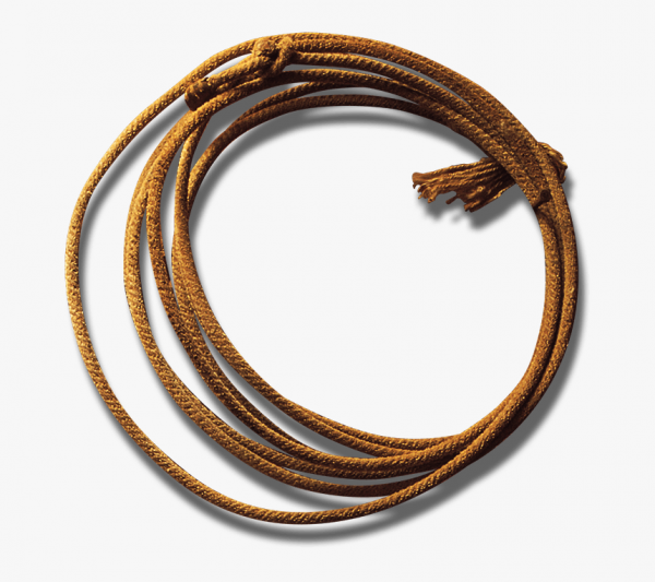 3-37717_transparent-rope-lasso-rope-transparent-background-hd-png